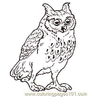 The Mitten Mural Owl Coloring Page Reversed Coloring Page Free
