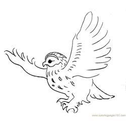 Flying owl Free Coloring Page for Kids