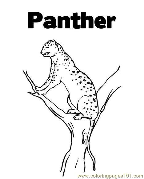 panther coloring page - Panther Coloring Pages