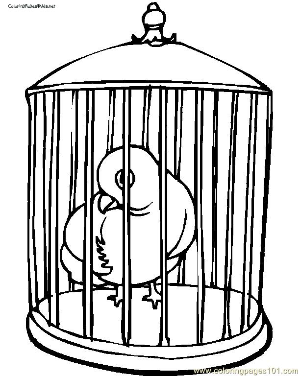 bird cage coloring pages - photo#3