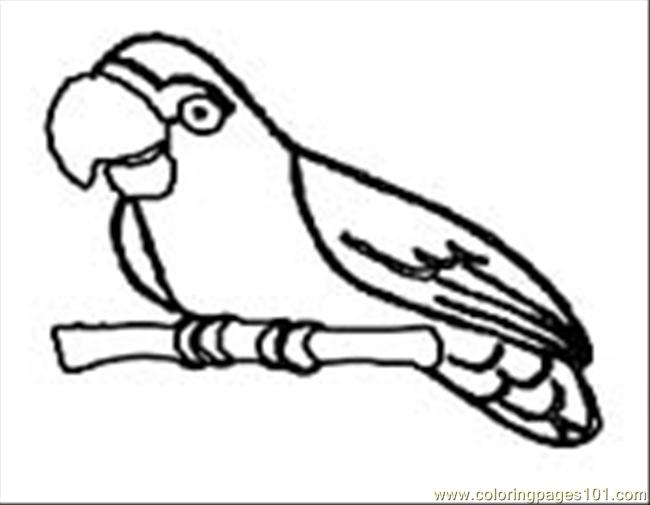 Parrot09 Coloring Page