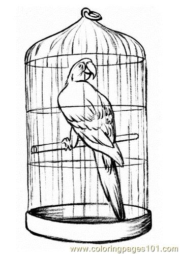 Parrot in a cage Coloring Page - Free Parrots Coloring Pages ...
