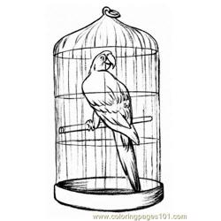 Parrot in a cage Free Coloring Page for Kids