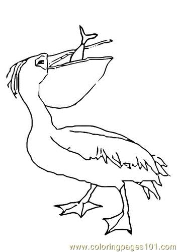 Pelican eat fish Coloring Page Free Pelican Coloring Pages