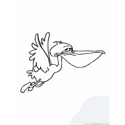 Funny flying Pelican