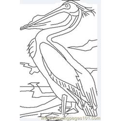 White pelican Free Coloring Page for Kids
