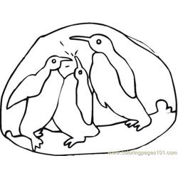 Penguin (4) Free Coloring Page for Kids