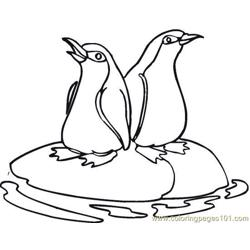 Penguin (6) Free Coloring Page for Kids