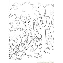 Peter Rabbit02
