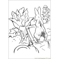 Peter Rabbit07