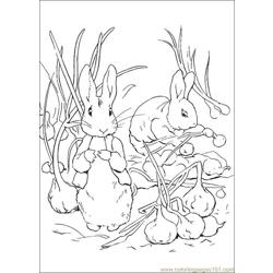Peter Rabbit15