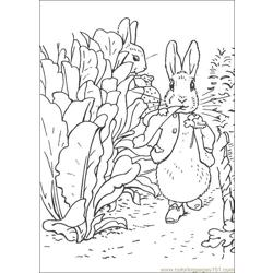 Peter Rabbit16