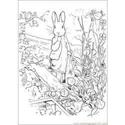 Peter Rabbit17