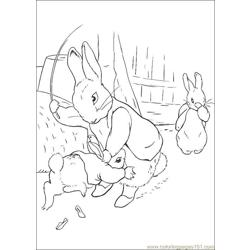 Peter Rabbit19