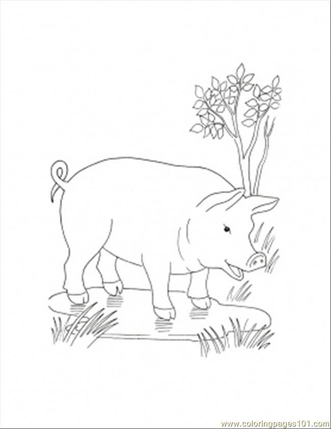 In The Puddle Coloring Page Coloring Page Free Pig