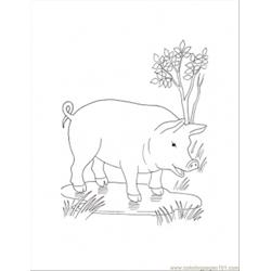 In The Puddle Coloring Page