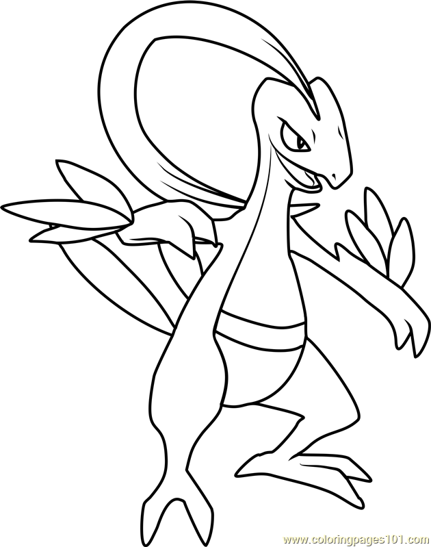 Grovyle Pokemon Coloring Page