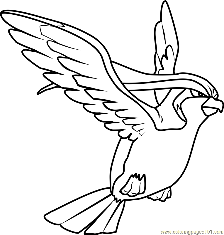 pidgeot pokemon coloring pages - photo#2
