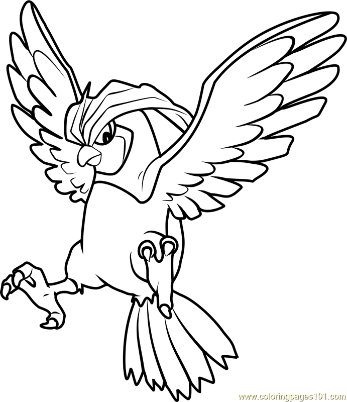 pidgeot pokemon coloring pages - photo#20