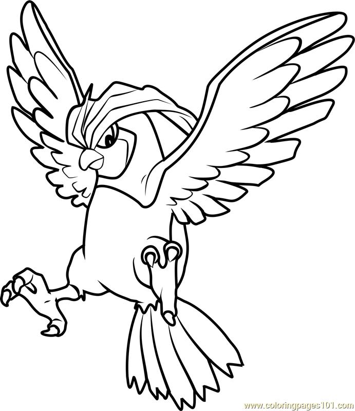 mega pidgeot coloring pages sketch coloring page