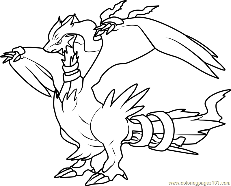 zekrom ex coloring pages - photo#24