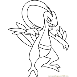 more pokmon coloring pages grovyle pokemon - Rayquaza Coloring Pages