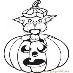 Pumpkin Cat Source V9w T3h Free Coloring Page for Kids