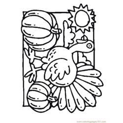 Turkey Pumpkin Free Coloring Page for Kids