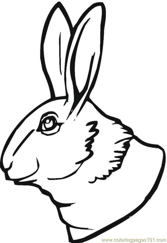Bunny 10 Coloring Page Free Rabbit Coloring Pages