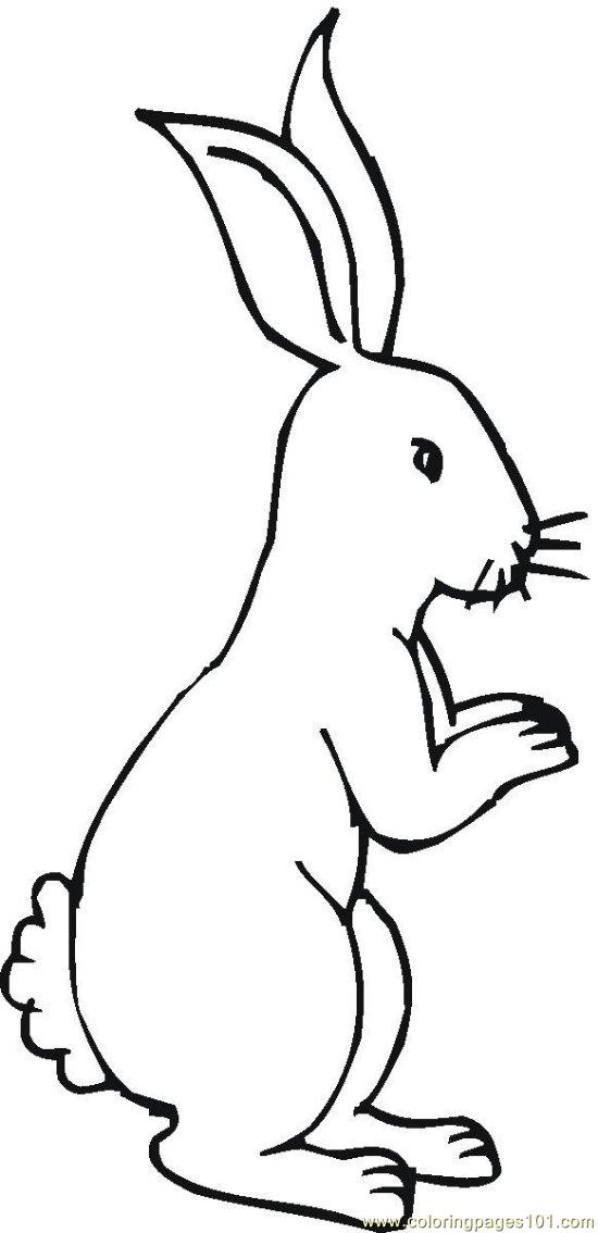 Bunny 5 Coloring Page Free Rabbit Coloring Pages