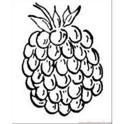 Raspberry 1 coloring page