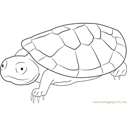 Sad Turtle Free Coloring Page for Kids