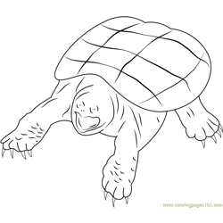 Snapping Turtle Free Coloring Page for Kids