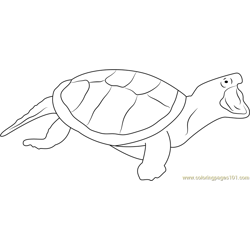 Turtle Attacking Free Coloring Page for Kids