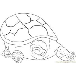 Turtle Mouth Free Coloring Page for Kids