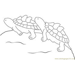 Two Turtle Free Coloring Page for Kids