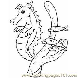 Seahorse With Fishes Free Coloring Page for Kids
