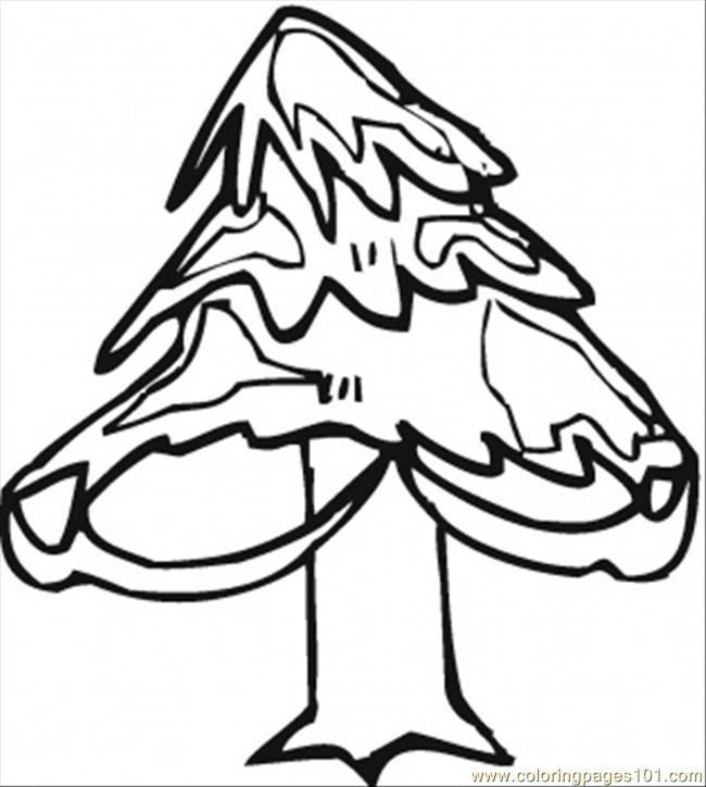 Pine Tree In Winter Coloring Page