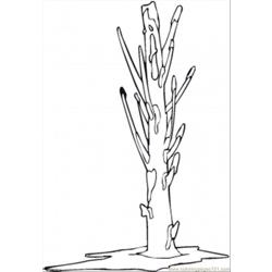 Naked Tree In February Free Coloring Page for Kids