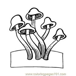 Herfst 37 coloring page