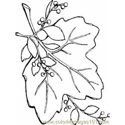 Leaf2 coloring page