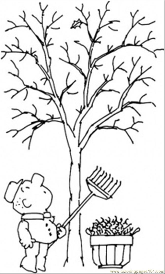 Tree In Fall Coloring Page