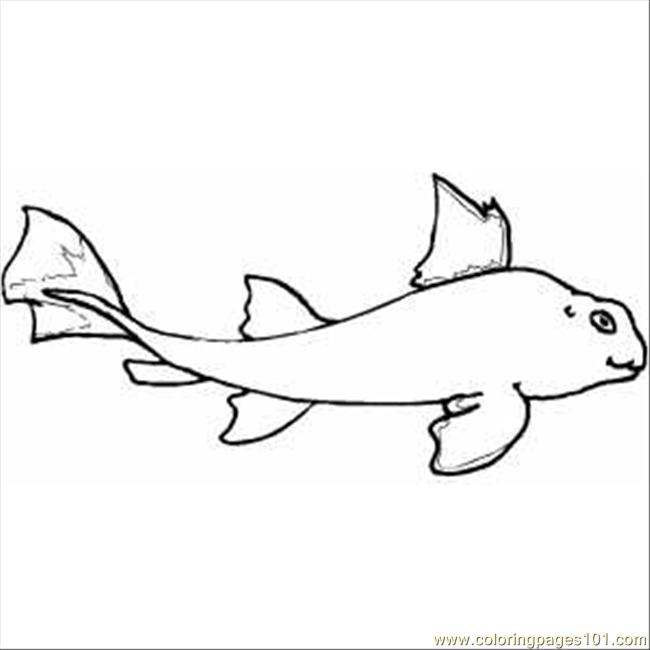 Shark Horn Coloring Page Free Shark Coloring Pages