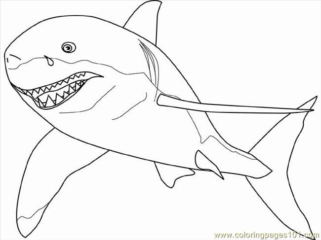 Great White Shark Coloring Page Free Shark Coloring Pages