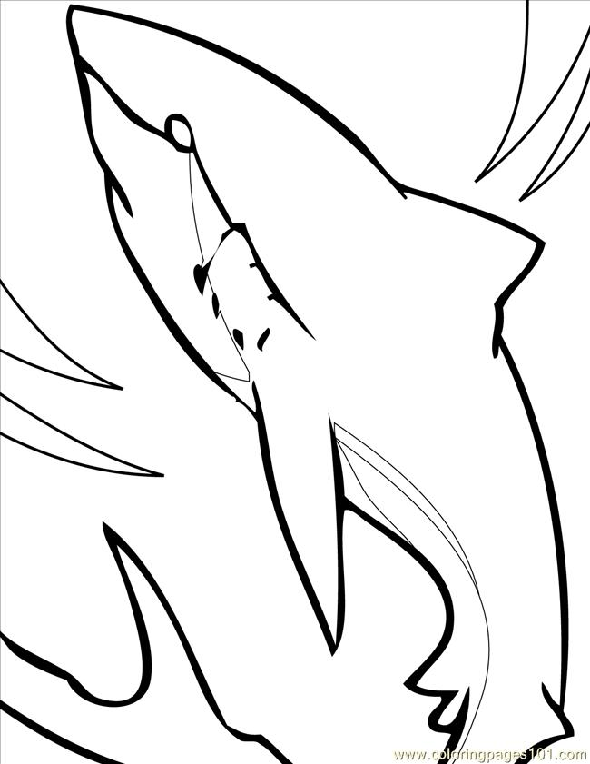 great white shark coloring pages online | Great White Shark Ink Coloring Page - Free Shark Coloring ...