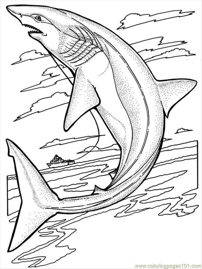 Sharks Coloring Page Free Shark Coloring Pages