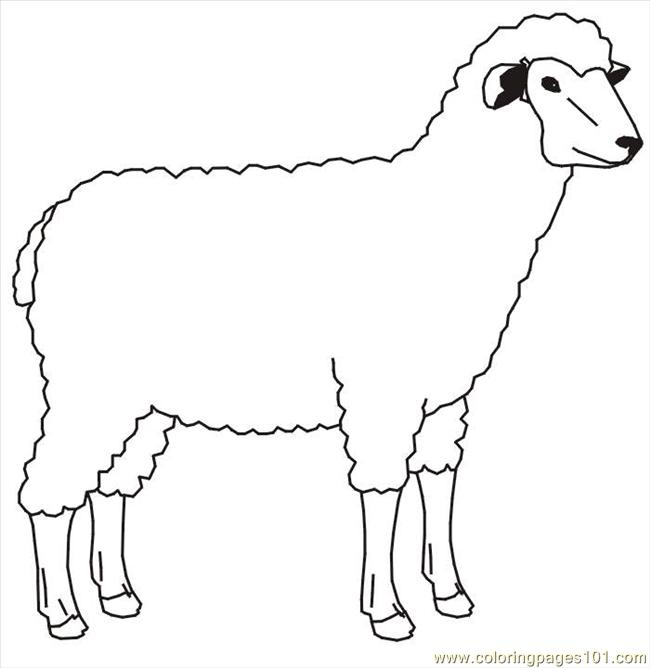 Sheep 1 Coloring Page Free Sheep Coloring Pages