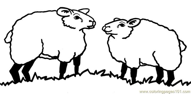 Two Sheep Coloring Page