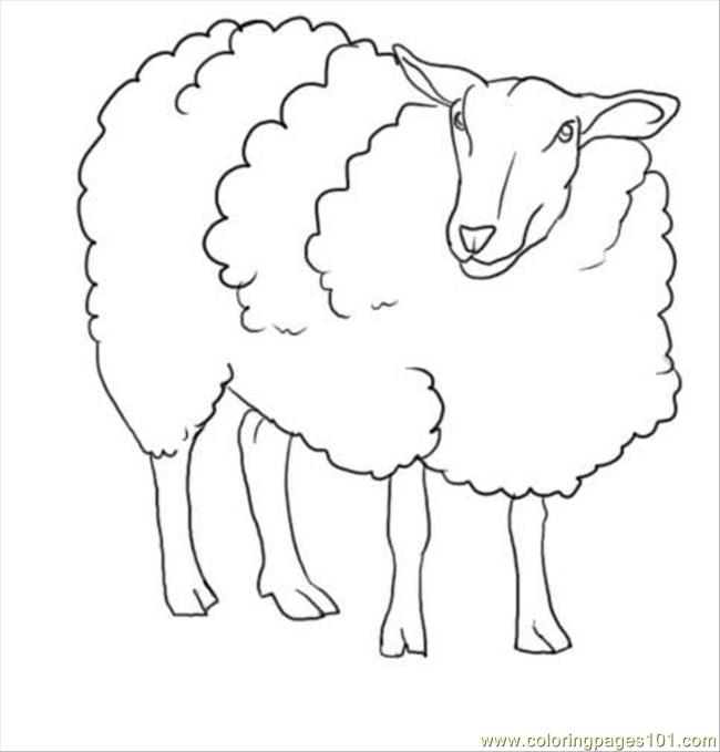 Coloring Pages Sheep Latest Fluffy Sheep Coloring Page With