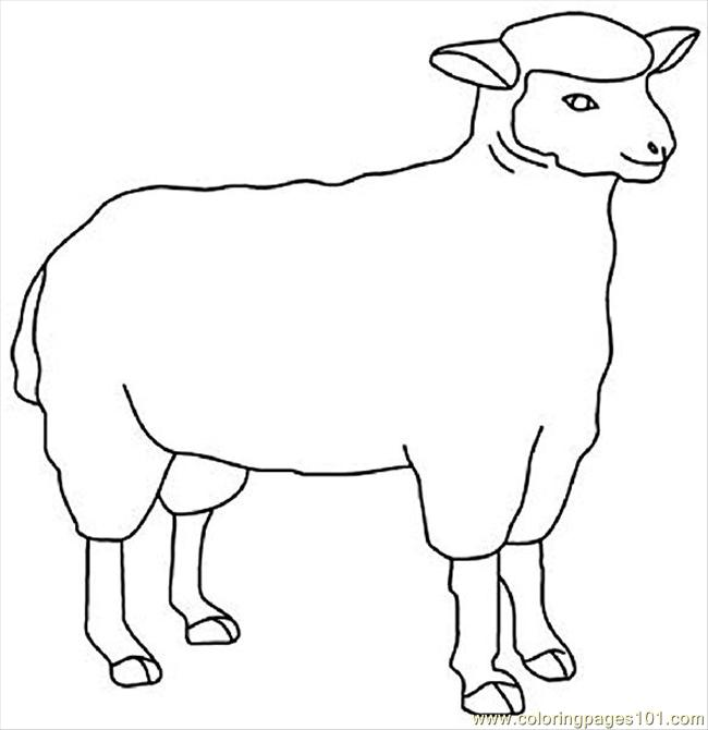 Sheep13 Coloring Page Free Sheep